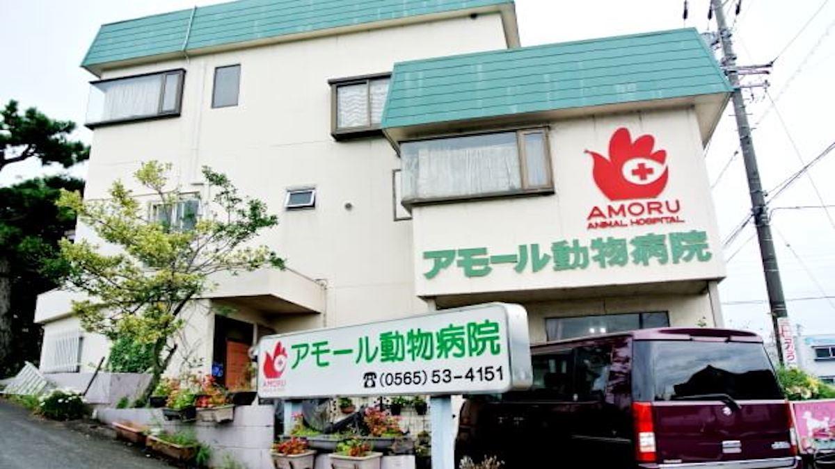 アモール動物病院