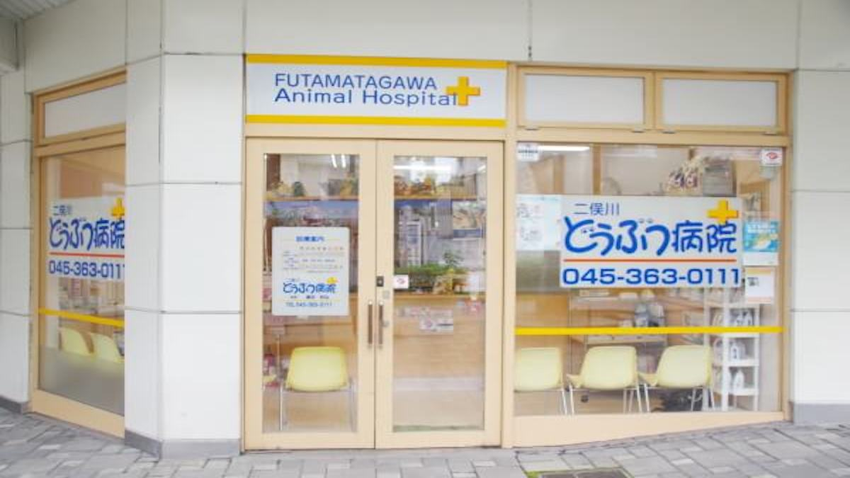 二俣川どうぶつ病院