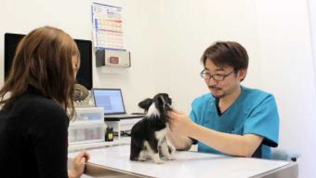 いちも動物病院 -Pet Life Ichimo 与野-
